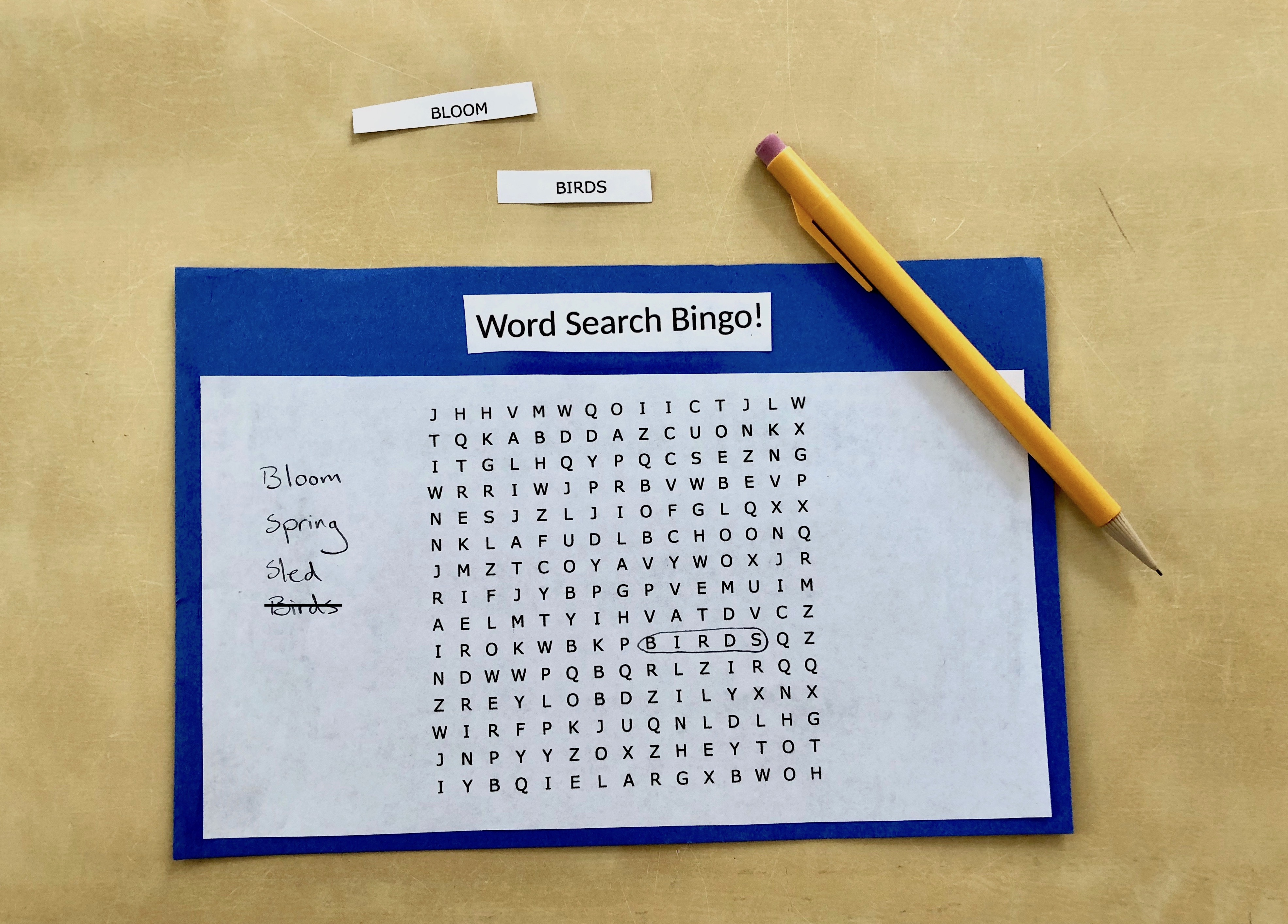 Word Search Bingo